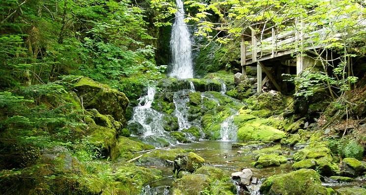 Camping ib Fundy National Park